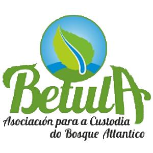 Logo de Betula