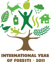 Logo of the International Year of Forests