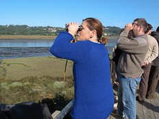 Photograph of a bird watching moment